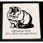 Custom engraved cat design 2 trivet / hot plate with personalized engraved text.