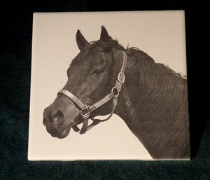 Cermic tiles and trivets make great horse show awrds or equestrian gifts.