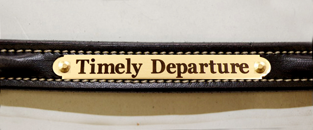 Edgewood black leather plain raised dog collar with FREE engraved brass nameplate.