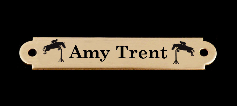 Engraved Brass or Silver Bridle Nameplate - Horse Designs