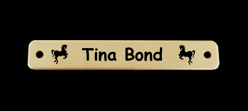 Custom engraved horse design 7 martingale nameplate with personalized text.