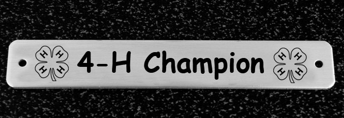 Engraved Brass or Silver Martingale Nameplate - 4-H Logo