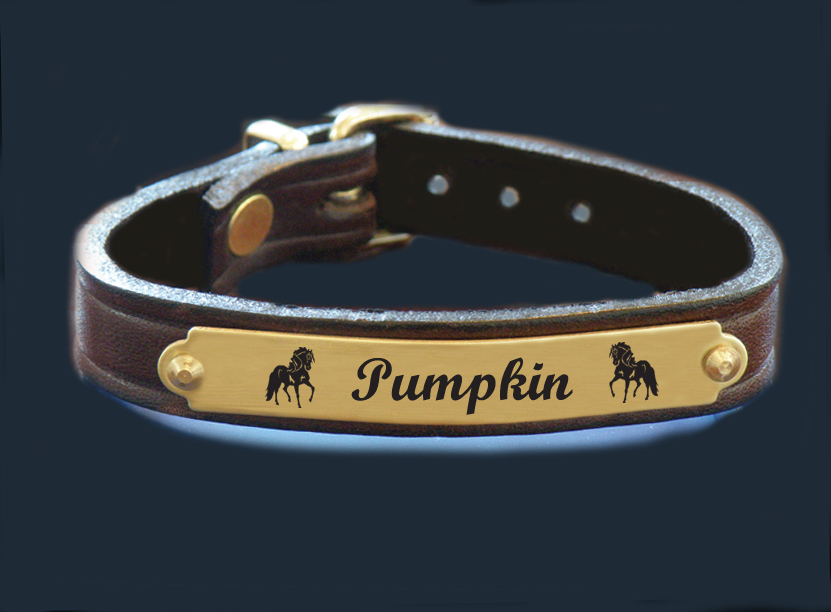Personalized brass nameplate leather bracelet with engraved horse design 4 and custom engraved text.