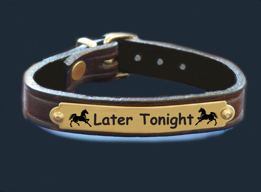 Custom engraved nameplate leather bracelet with horse design 7 and personalized engraved text.