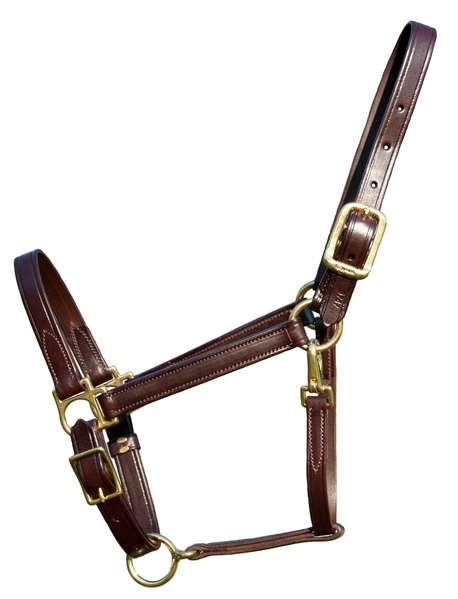 Classic Leather Walsh Horse Halter with Free Engraved Brass or Silver Nameplate.