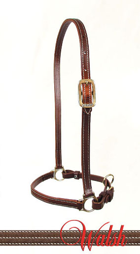 Leather Walsh Grooming Halter with Chestnut colored leather.