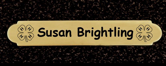 4-H logo ornamental engraved brass or silver nameplate with adhesive back.