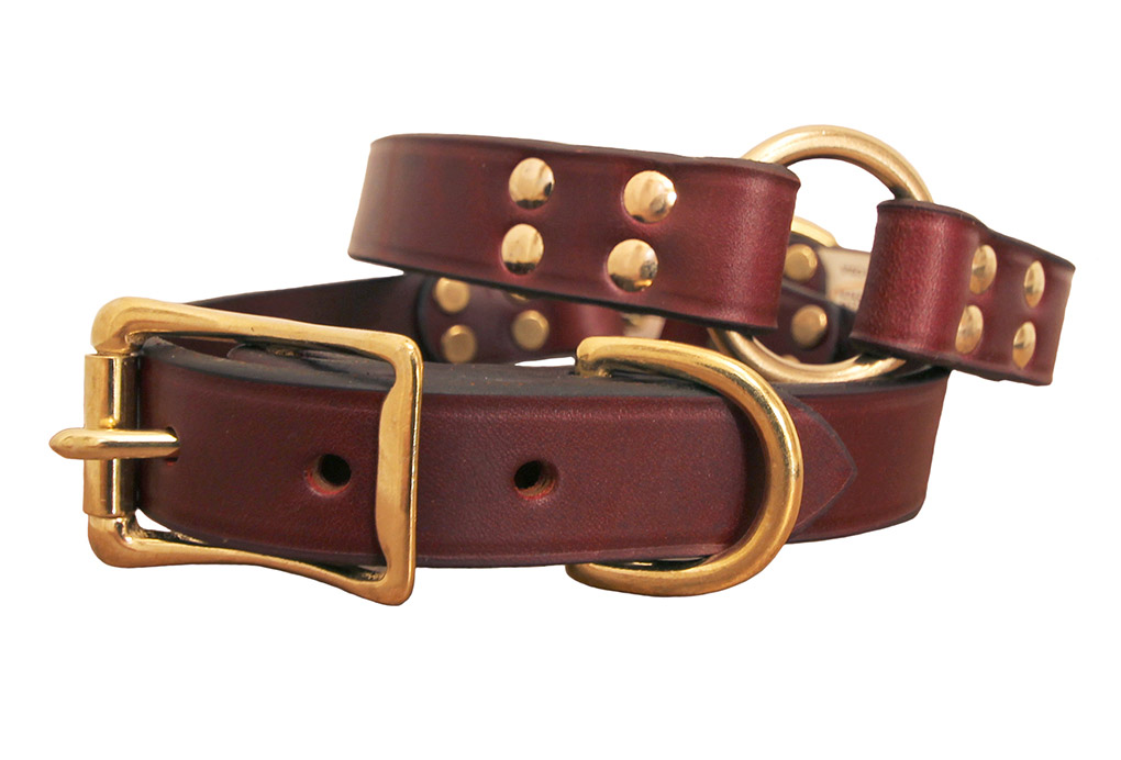 Center ring hunting dog collar made of latigo leather with brass hardware.