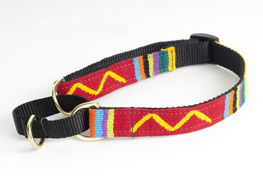 Adjustable A Tail We Could Wag woven fabric martingale dog collar.