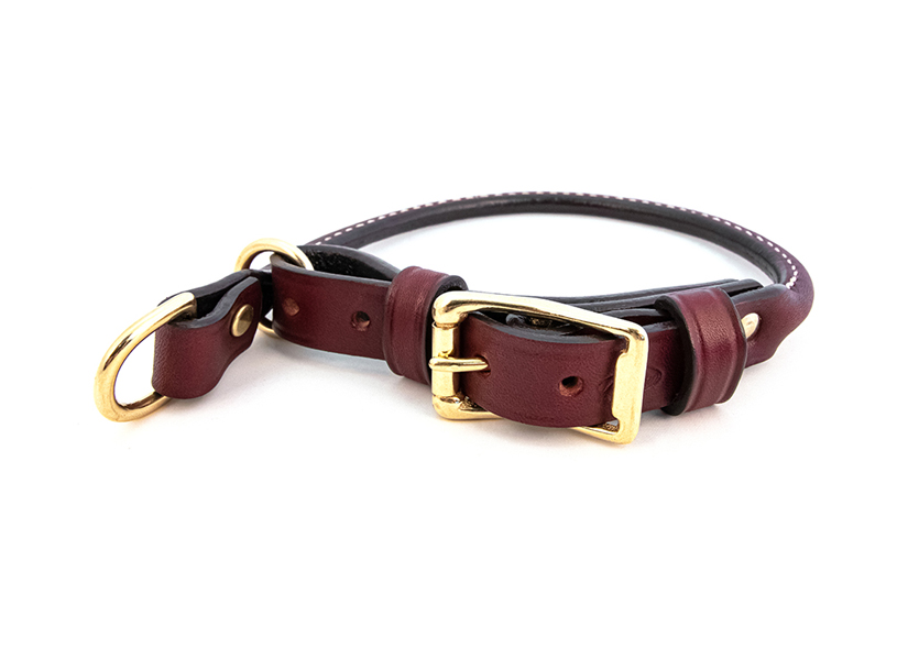 Rolled bridle leather martingale style combination dog collar with a brass buckle form Auburn Leathercrafters.