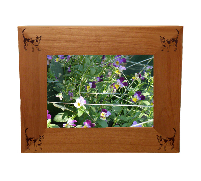 Personalized wood picture frame with custom engraved cat design 2 and text.