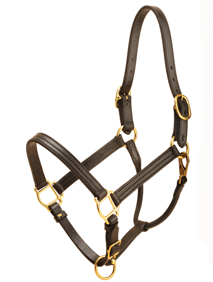 Black Tory Leather track halter with adjustable chin and throat snap.
