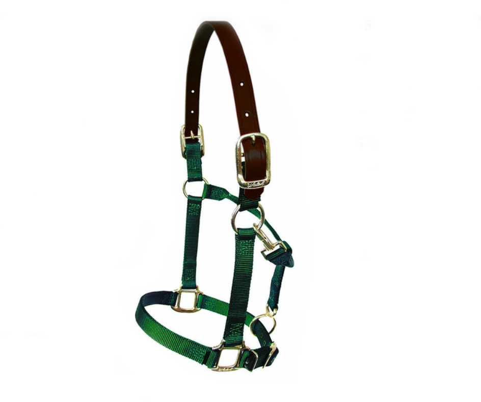 Walsh nylon horse halter with an adjustable chin.