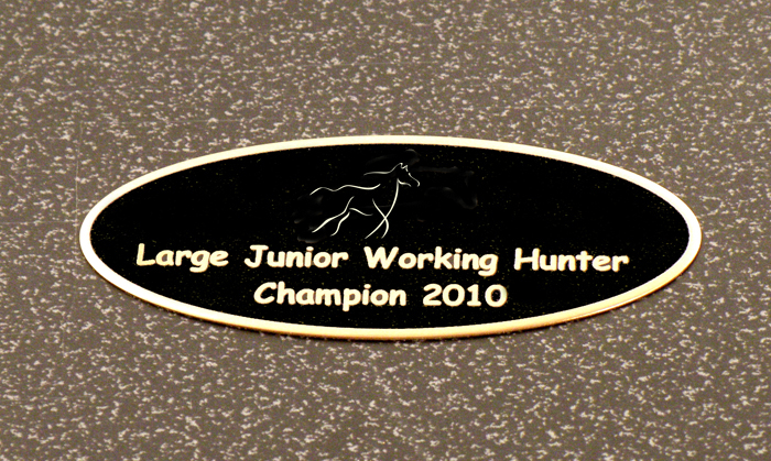 Engraved black brass horse design 2 tack trunk nameplate for your small tack trunk or grooming box.